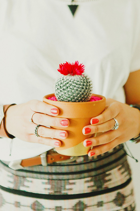 Cactus party favors