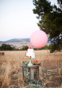 Modern, Rustic Wedding Cake