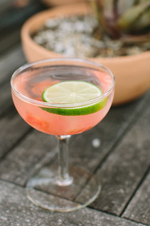 Watermelon cocktail | photo by Taryn Kent