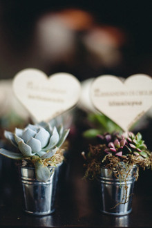 Succulent favors with wooden engraved hearts