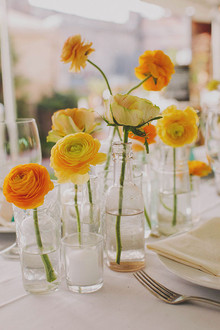 Yellow and orange peonies