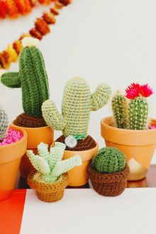 crocheted cactus favors