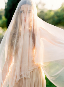 Blush wedding veil