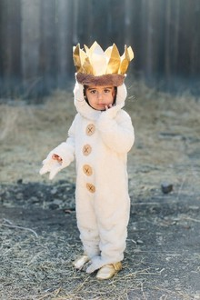 wild things costume