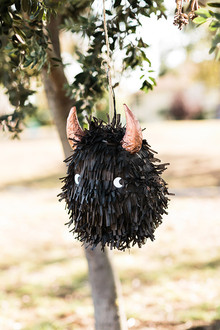 wild thing piñata