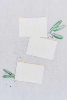 Elegant gold escort cards