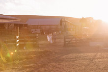 Ranch wedding venue