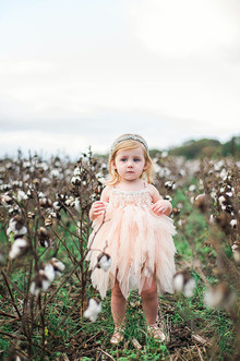 Cotton field family photos