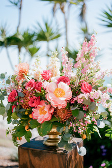Colorful peony florals