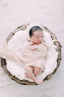 beautiful styled newborn photos