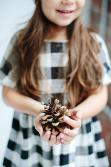 modern styled holiday photos