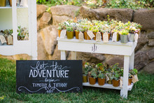 Plant wedding favor