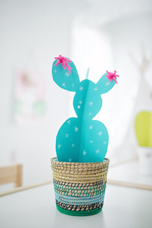 Modern cactus birthday party