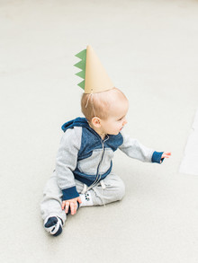 Modern dinosaur 1st birthday party