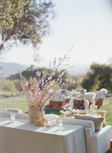 Outdoor party decor