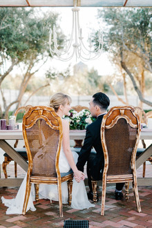 Elegant bride and groom chairs
