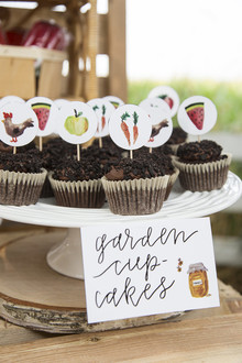 Farmer's market 1st birthday party