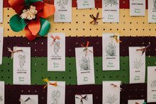 cactus escort card display