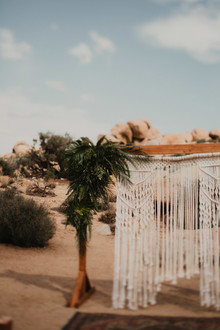 Macrame backdrop for wedding in Joshua Tree