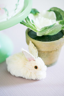 Bunny themed birthday party for spring
