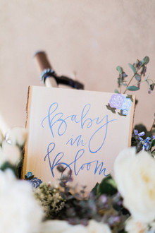 French garden themed boy's baby shower