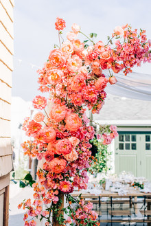 Coral peony arch