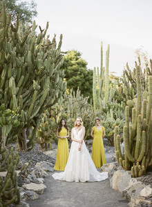Elegant spring wedding ideas in a cactus garden