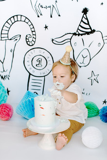 Greatest of All Time (G.O.A.T.) first birthday cake smash session