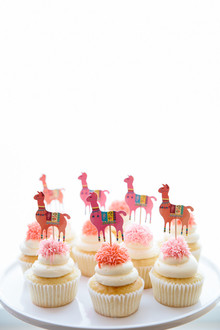 Festive all pink llama party inspiration