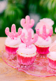All pink Cinco de Mayo party with cactus cupcakes