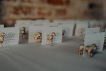 brass doggy escort cards