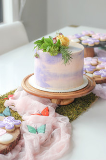 Enchanted sleepover birthday party ideas on 100 layer cakelet
