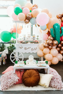 llama baby shower ideas