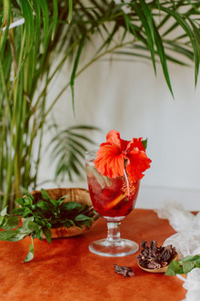Costa Rican cocktail recipe
