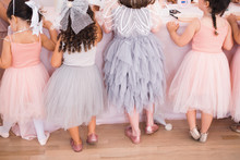 girl's tutu birthday party