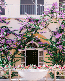 bougainvillea wedding backdrop