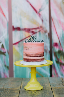 small painted wedding cake