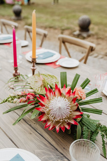 King protea for colorful tropical tablescape