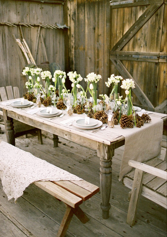 Pinecones, Tulips and Paper White Tablescape