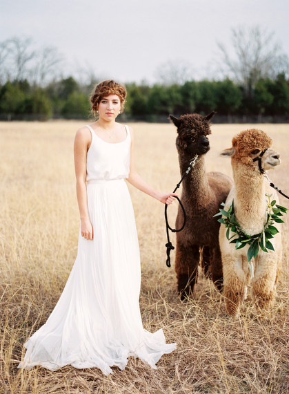 Alpaca Farm wedding inspiration