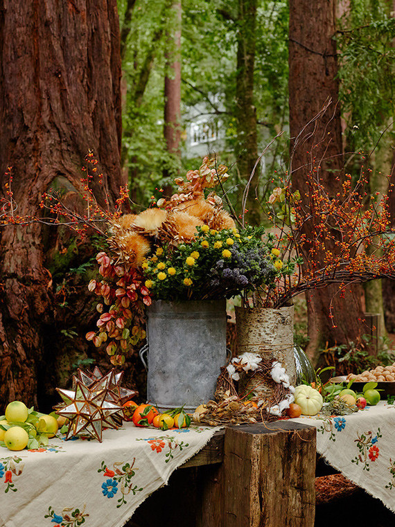 Rustic Fall Party In The Redwoods Wedding Amp Party Ideas