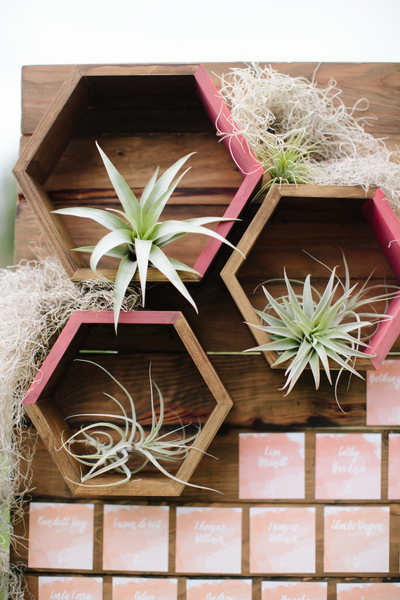 Geometric air plant holder wedding party ideas 100 for Air plant holder ideas