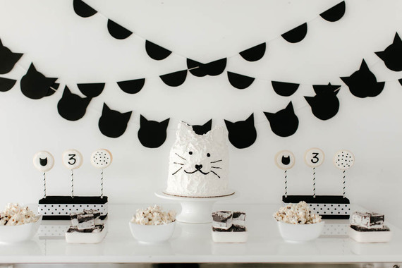black and white kitty birthday