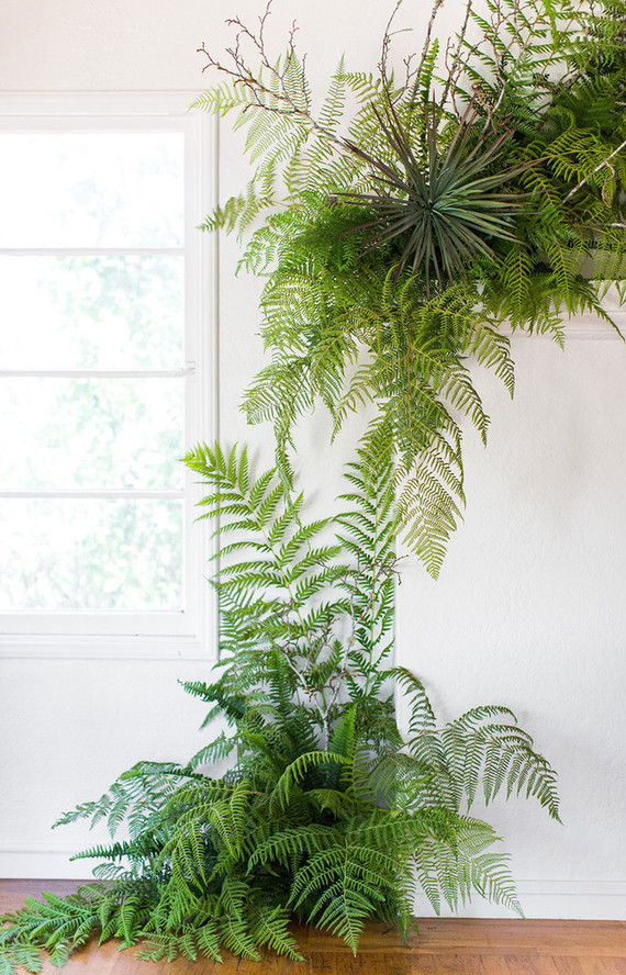 Fern decor