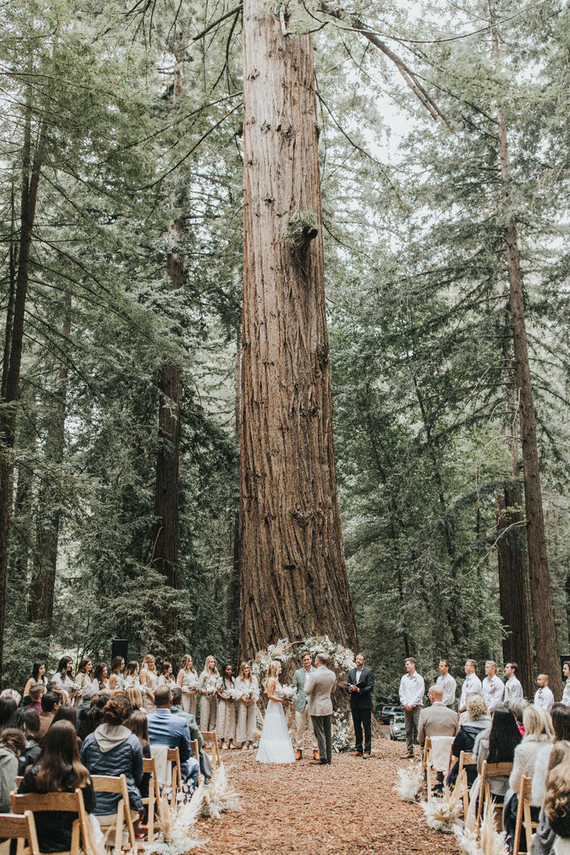 Redwood ceremony
