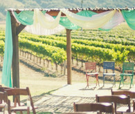 Vineyard Arbor Ceremony Decor