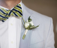 blue and green bow-tie