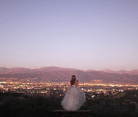 Bride looking over city skyline