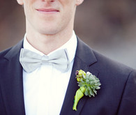 Grey Bow Tie and Succulent Boutonniere