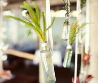 Greenery hanging from rustic bottles